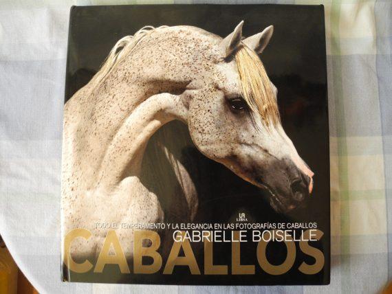 Equitacion Gabrielle Boiselle Lo Maximo En Fotos De Caballos