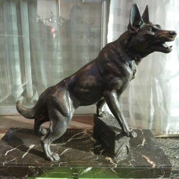 El Perro Gran Amigo Y Compañero