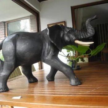 Elefante De Cigna